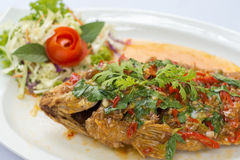 Deep fried red tilapia topped with sweet and sour sauce on top. Stock Photos