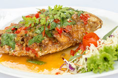 Deep fried red tilapia topped with sweet and sour sauce on top. Royalty Free Stock Photos