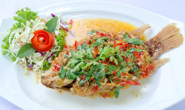 Deep fried red tilapia topped with sweet and sour sauce on top. Stock Image