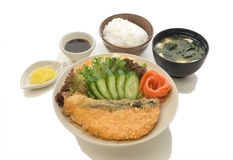 Deep Fried Salmon Set Royalty Free Stock Image