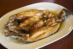 Deep fried Sea Bass fish Stock Images