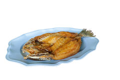 Deep Fried sea bass with fish sauce Royalty Free Stock Image