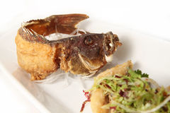 Deep fried seafood on white background. Photograph of deep fried seafood fish on white background Stock Photos