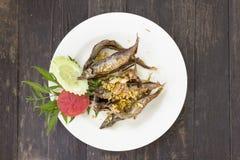Deep fried shisamo fish. On plate at Thai restaurant Stock Photos