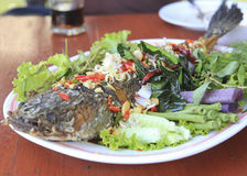 Deep Fried Snakehead Fish with Herb Stock Photos