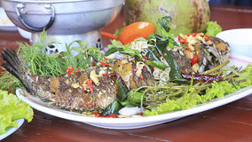 Deep Fried Snakehead Fish with Herb Royalty Free Stock Photography