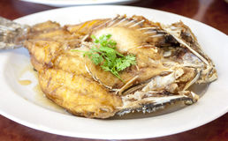 Deep fried snapper fish. With fish souce Royalty Free Stock Image