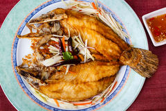Deep-fried snapper, stlye thai food. Stock Images