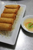 Deep fried spring rolls Royalty Free Stock Photo