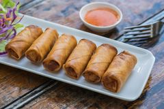 Deep fried spring rolls and vegetables on plate. Deep fried spring rolls and vegetables on a plate Stock Images