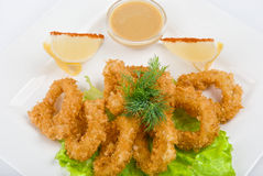 Deep-fried squid Royalty Free Stock Photo