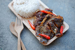 Deep fried tilapia fish topped chili spicy Royalty Free Stock Image