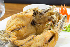 Deep fried white seabass topped fish sauce Stock Image