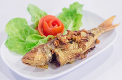 Deep Fried whole fish Stock Images