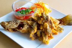 Deep fried whole sea perch with fish sauce Stock Photography