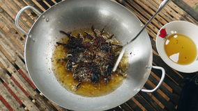 Deep frying spider, tarantula spider, stock video
