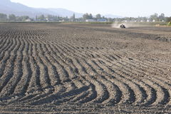 Deep Furrows in Field Stock Images