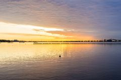 Deep golden sunrise over calm lake, silhouette of bird swimming. In foreground, dramatic cloudscape Stock Photo