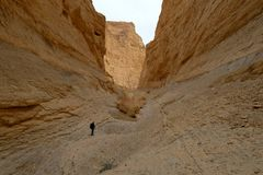 Deep gorge in Judea desert. Royalty Free Stock Image