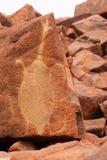 Deep Gorge petroglyph. Aboriginal rock petroglyph in Deep Gorge, Australia Stock Photo