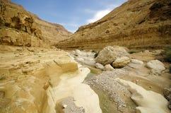 Deep gorge - wadi Zeelim in Judea desert, Israel. In the day Stock Photography