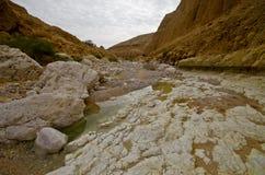 Deep gorge - wadi Zeelim in Judea desert, Israel. In the day Royalty Free Stock Photography