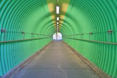 deep of green color tunnel horror feel Stock Image