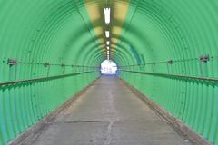 deep of green color tunnel horror feel Royalty Free Stock Image