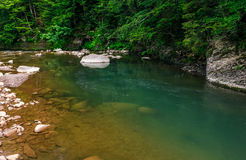 Deep green forest river with rocky shore Stock Photos
