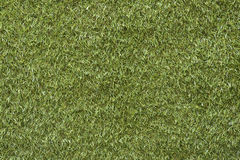 Deep green grass texture Stock Photo