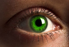 Deep green human eye. Royalty Free Stock Photo