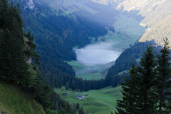 Deep green valley with lake, Switzerland Royalty Free Stock Images