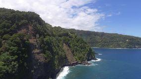 Deep green wild nature tropical forest on stone rock cliff in Hawaii island Maui Pacific ocean 4k aerial drone seascape. Deep green wild nature tropical forest stock video footage