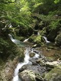 Deep in the green woods, a stream rolling over the white waves stock photo