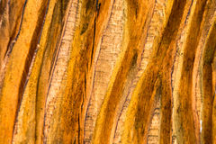 Deep grooved wood texture background Royalty Free Stock Photos