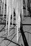 Deep Icicle Freeze. Sharp Spikes of Dripping Cold Icicles in Winter Royalty Free Stock Photography