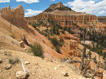 Deep inside Bryce Canyon Royalty Free Stock Image