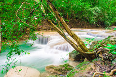 Deep jungle forest Waterfall in Kanchanaburi, Thailand Royalty Free Stock Photos