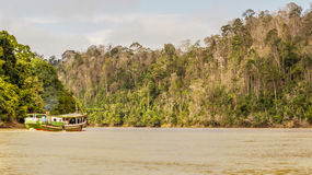 A wooden boat cruising the river deep in the forest Stock Photos
