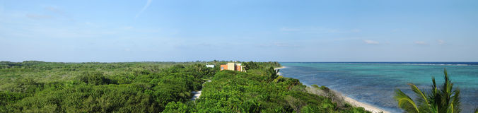 Deep in the jungle on the yucatan coast Stock Photo