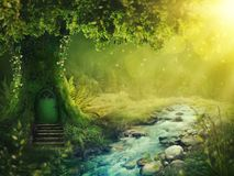 Deep magic forest. With sunshine royalty free stock photography