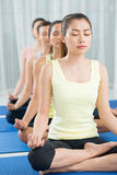Deep meditation. Vertical image of young women meditation in yoga pose in a line Royalty Free Stock Photos