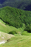 Deep mountain valley. Specific limestone valley with green vegetation Stock Photo