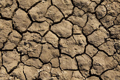Deep Mud Cracks Background Stock Photography