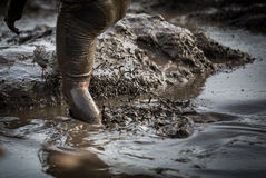 Deep muddy water with feet splashing and climbing out of the mud Royalty Free Stock Photos