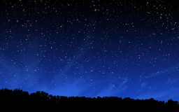 Deep night sky with many stars and forest Stock Photos