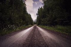 Deep perspective of gravel road through forest. Royalty Free Stock Photos