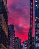 Deep pink, deep blue, sunset. Amazing sunset, purple/pink and blue stock photos