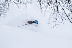 Deep powder skiing in Japan Royalty Free Stock Images