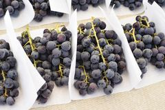 Deep Purple Fresh Grapes at a Farmers Market Stand. Bunches of grapes sit on a table in a market stall at the Farmers Market stock photos